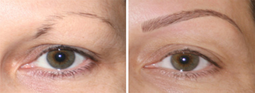 can be changed in a variety of ways for example a short eyebrow can ...